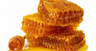 چگونه عسل طبیعی را از تقلبی تشخیص دهیم؟